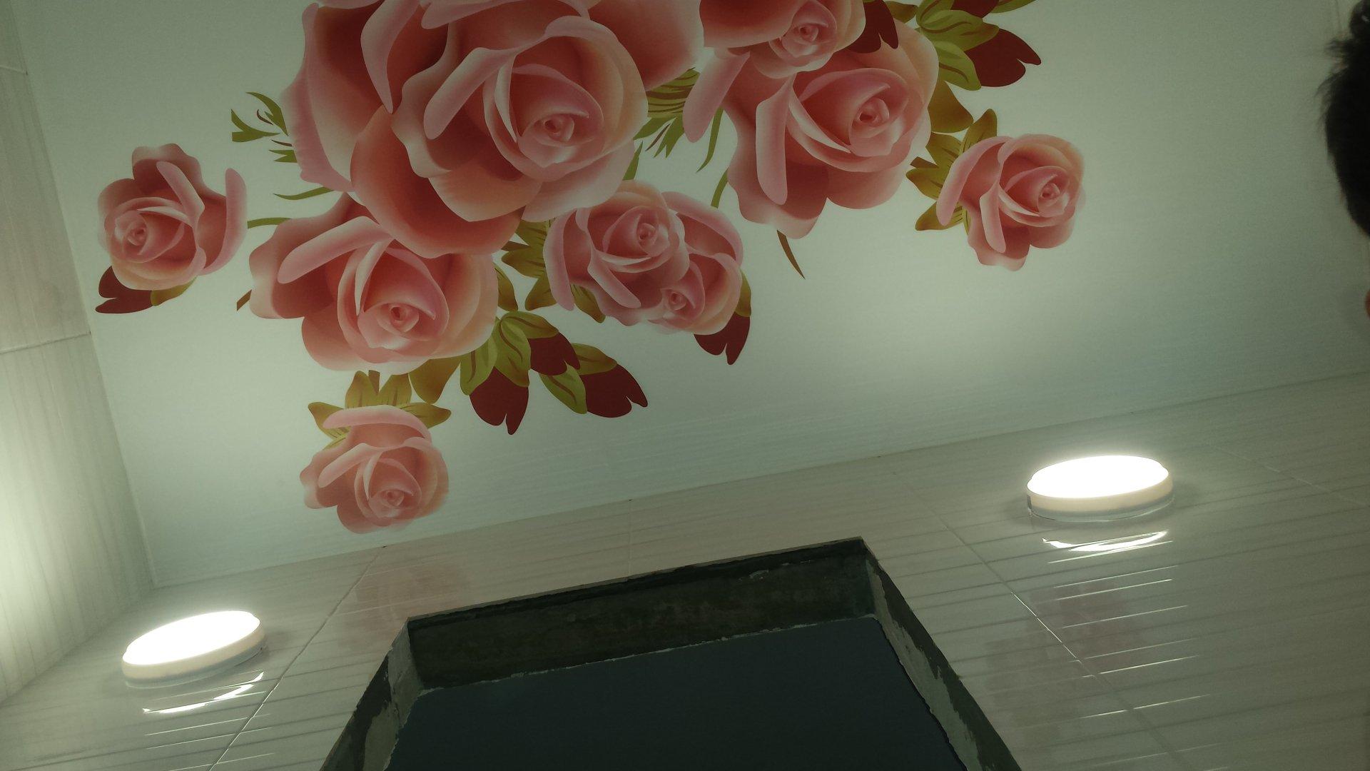 ценностью натяжные потолки с розами фото использовать